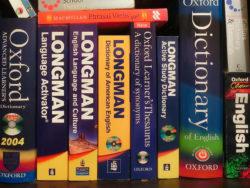 монолингвальные словари